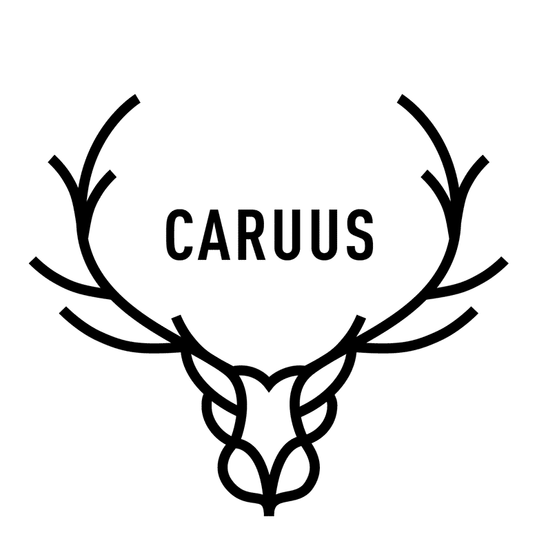 https://www.marques-de-france.fr/wp-content/uploads/2019/04/Caruus_logo-bis.png
