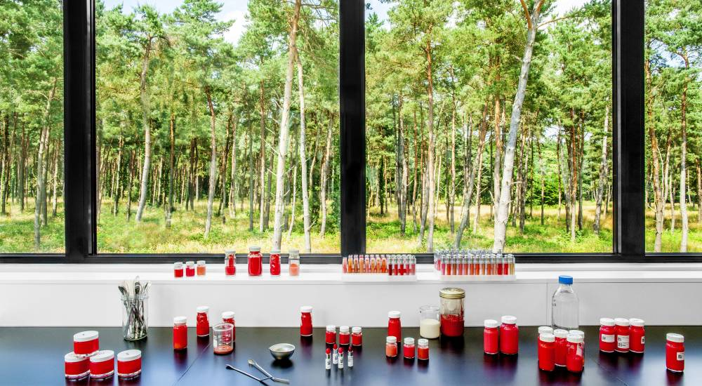 La Cosmetic Valley, berceau de l'innovation de la parfumerie-cosmétique - 1