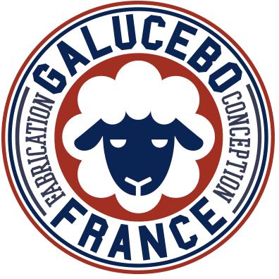https://www.marques-de-france.fr/wp-content/uploads/2019/07/Galuvebo_logo.png